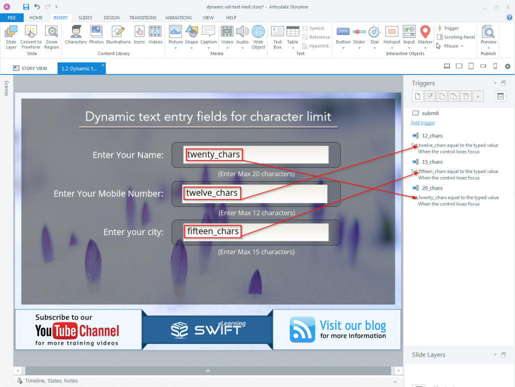How to set Character limit for a dynamic text entry field in Articulate Storyline-step04