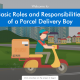 Elearning Sample-Basic Roles and Responsibilities of a Parcel Delivery Boy
